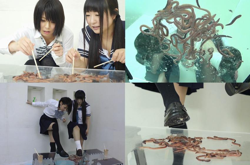インセクトクラッシュ~女子高生JKがローファーで大量の極太ミミズを踏み潰す!透明テーブルの下から映したミミズの屍骸はグッチョグチョ