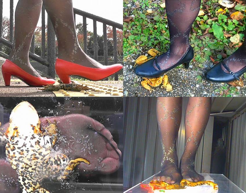 【Toad Crash】黒パンストでヒキガエルを直踏み潰す美脚OLの衝撃的なクラッシュ映像!ヒールとストッキングと脚線美の色気、踏み潰しバリエーションの多彩さは「ヒキガエル踏み潰しシリーズ」史上最高傑作!